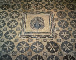 Cyprus, Paphos District, Paphos, Villa of Dionysos, mosaic floor with detail of peacock