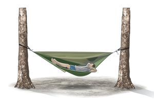 Digital illustration of man lying on hammock hanging between two tree trunks